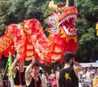 Ano Novo Chinês e suas curiosidades,2017 o Ano do Galo!